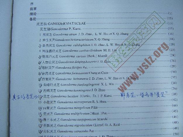赤芝,灵芝,中国灵芝图鉴目录看灵芝的定义
