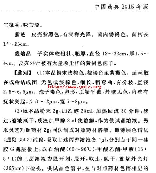 中国药典灵芝2.jpg