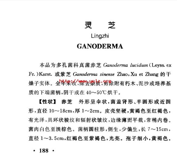 《灵芝知识扫盲》2:中华人民共和国药典只收载了赤芝,紫芝