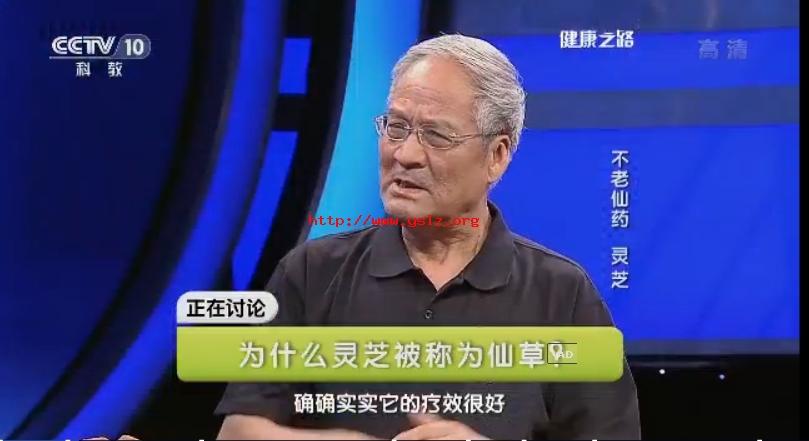 cctv-10健康之路节目邀专家讲述不老仙药-灵芝